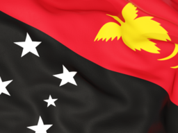 papua_new_guinea_flag_background_256